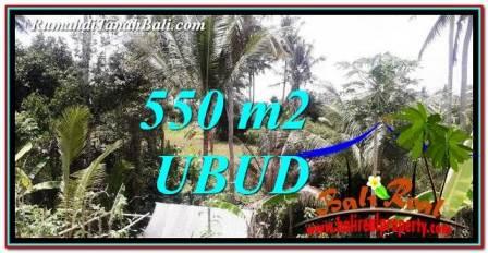 TANAH MURAH di UBUD DIJUAL 550 m2 di Ubud Pejeng