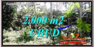 TANAH di UBUD DIJUAL MURAH Untuk INVESTASI TJUB747