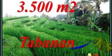 JUAL TANAH MURAH di TABANAN BALI TJTB500