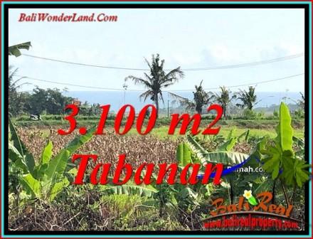 JUAL TANAH MURAH di TABANAN 3,100 m2 VIEW SAWAH GUNUNG DAN LAUT
