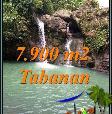 TANAH MURAH DIJUAL di TABANAN 79 Are di SELEMADEG BARAT