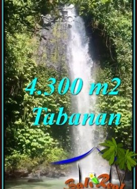 DIJUAL MURAH TANAH di TABANAN BALI 4,300 m2 di SELEMADEG BARAT