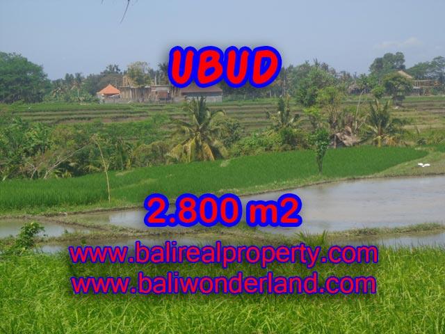 Jual tanah di Ubud 28 Are di Dekat sentral Ubud Bali