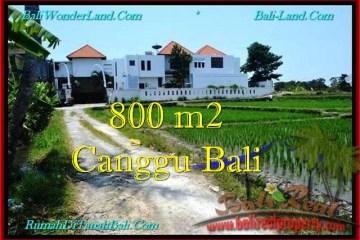 JUAL TANAH di CANGGU 800 m2 View sawah, lingkungan villa