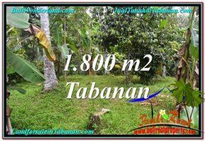 DIJUAL TANAH di TABANAN Untuk INVESTASI TJTB293