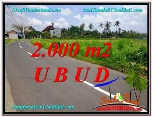 TANAH DIJUAL MURAH di UBUD BALI 2,000 m2 di Sentral Ubud