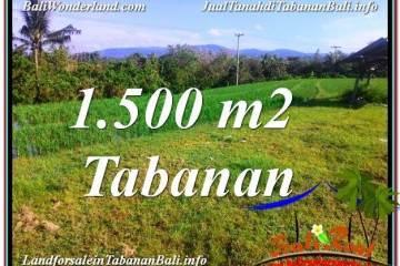 INVESTASI PROPERTI, TANAH MURAH DIJUAL di TABANAN TJTB353