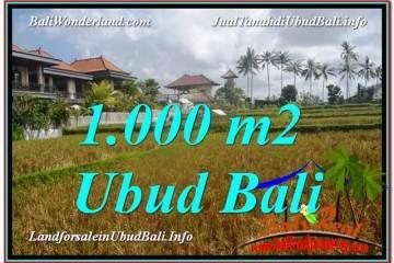 TANAH DIJUAL MURAH di UBUD BALI Untuk INVESTASI TJUB618