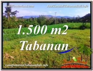 INVESTASI PROPERTI, TANAH DIJUAL di TABANAN BALI TJTB353