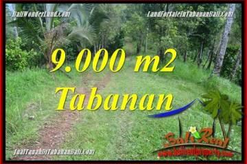 TANAH MURAH di TABANAN JUAL 90 Are View kebun