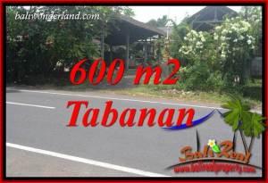 Dijual Murah Tanah di Tabanan Bali TJTB400