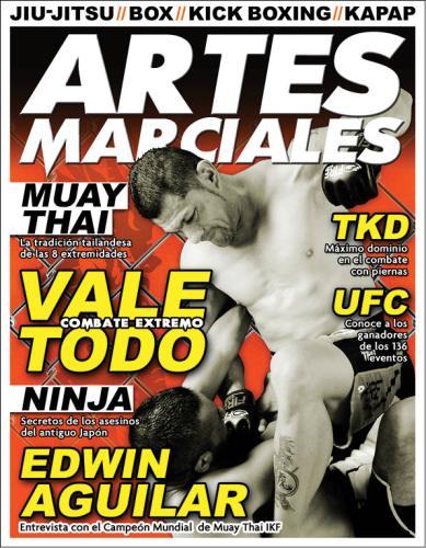 artes marciales2