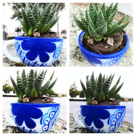 do it yourself mexican talavera pottery