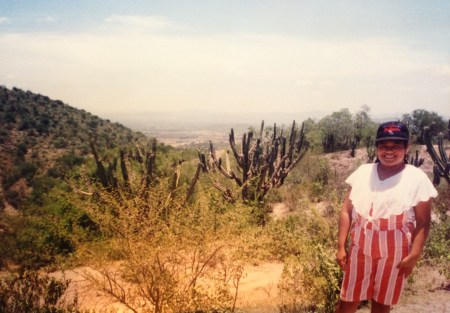 Missing Mexico by Sybil Sanchez