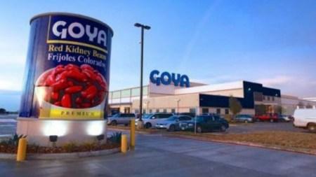Go Goya