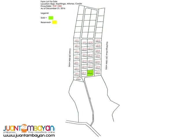 1,000/sqm Subdivided Farm Lot For Sale Installment Basis