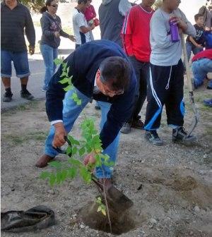 Plantan Más de 600 Arboles en Campaña ¨Un Nuevo Bosque 2015¨