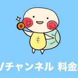 dTVチャンネル 料金