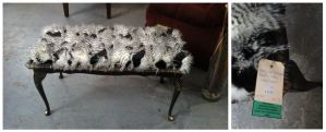 A Feathered Bench