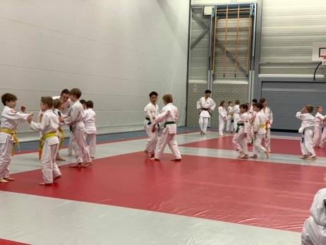 judo kidsles