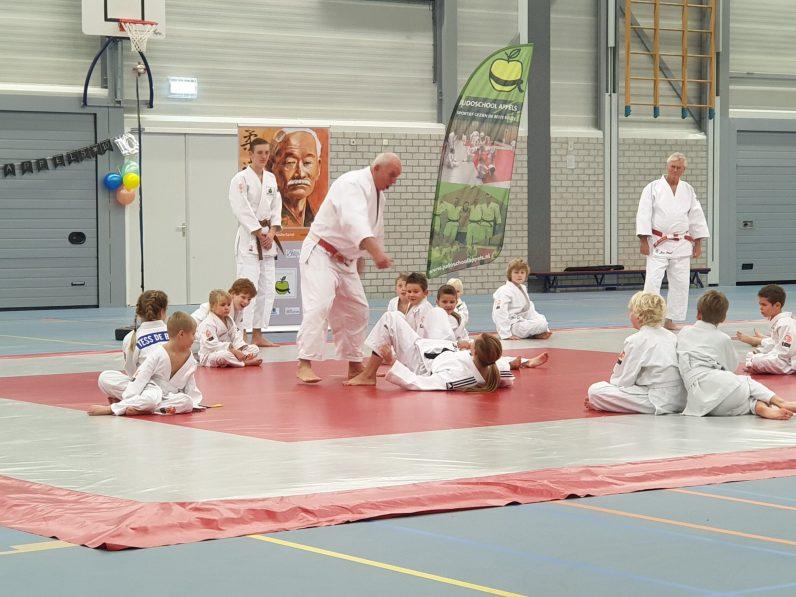 judo is leuk