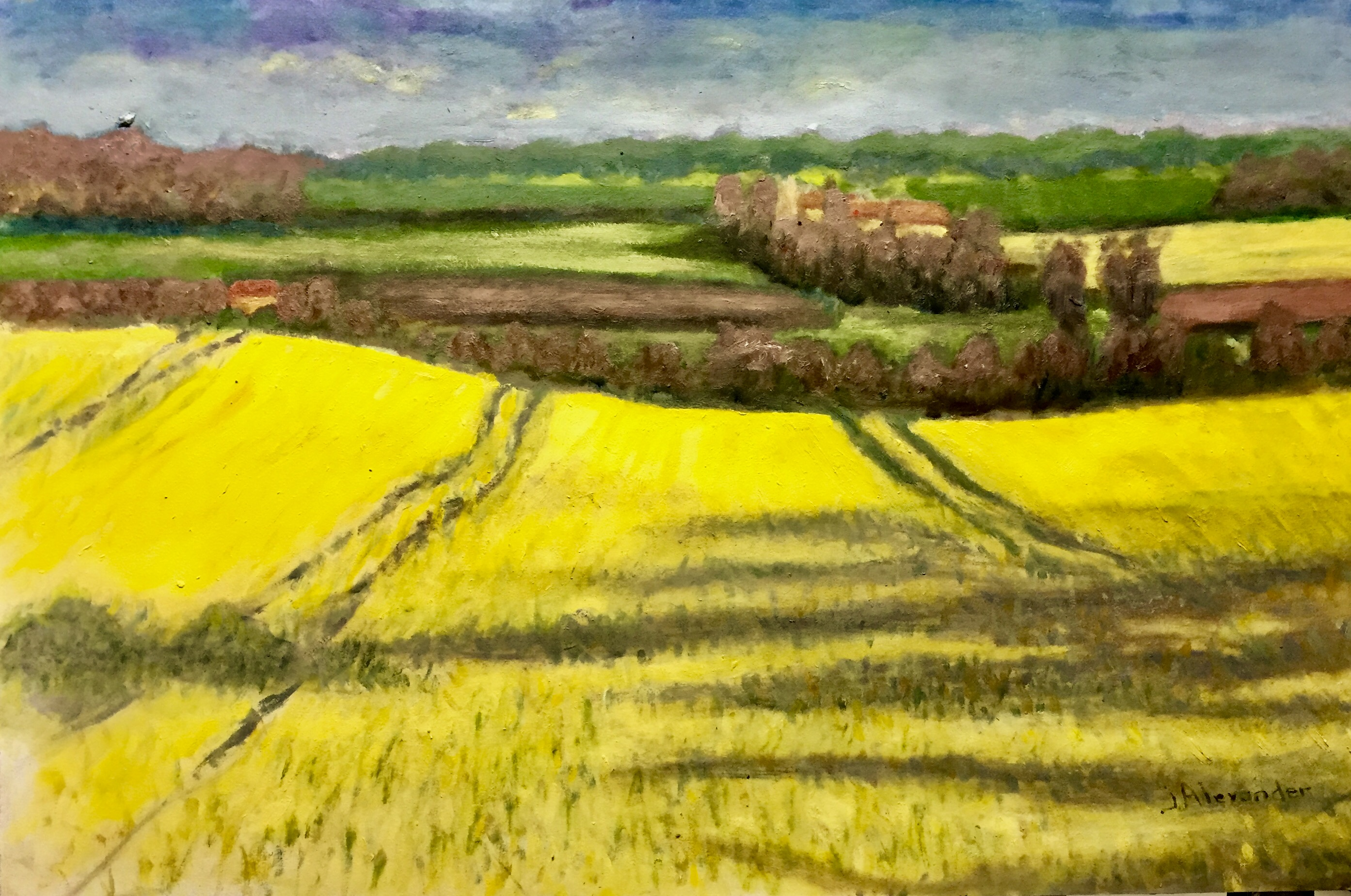 Fields of Gold II