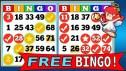 Bingo Online Gratis en Chile