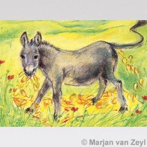Marjan-van-Zeyl-kaart-tafeltje-dekje-ezeltje-strekje