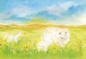Baukje-exler-het-schaap