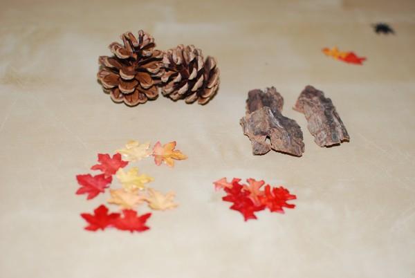 Sorteren herfst