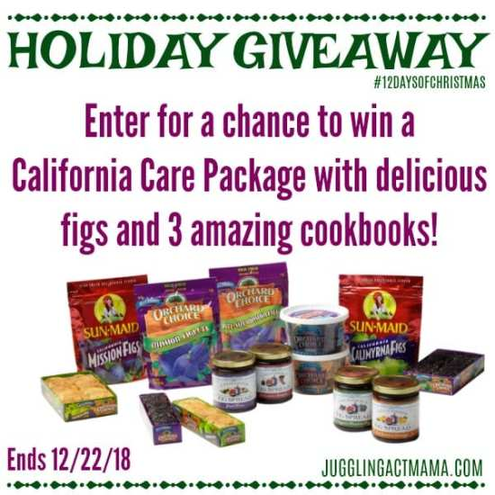 Valley Fig 12 Days of Christmas Giveaway - Juggling Act Mama