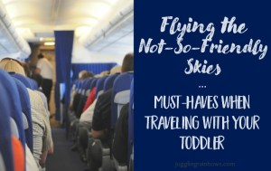 Flying the Not-So-Friendly Skies…with a Toddler
