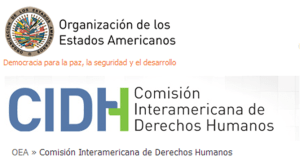 Comisión Interamericana de los derechos humanos