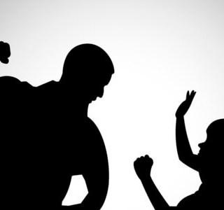 Juicios por demanda sobre violencia familiar