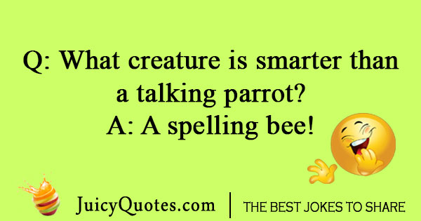 Image result for spelling bee quotes