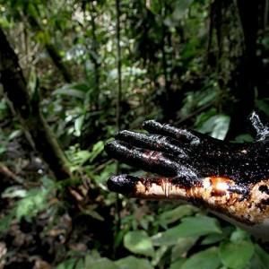 contaminacion petroleo