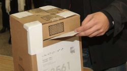 cropped-urna-votando-2.jpg