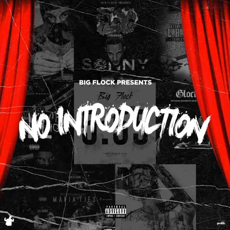 Big Flock – No Introduction (First Day Out)