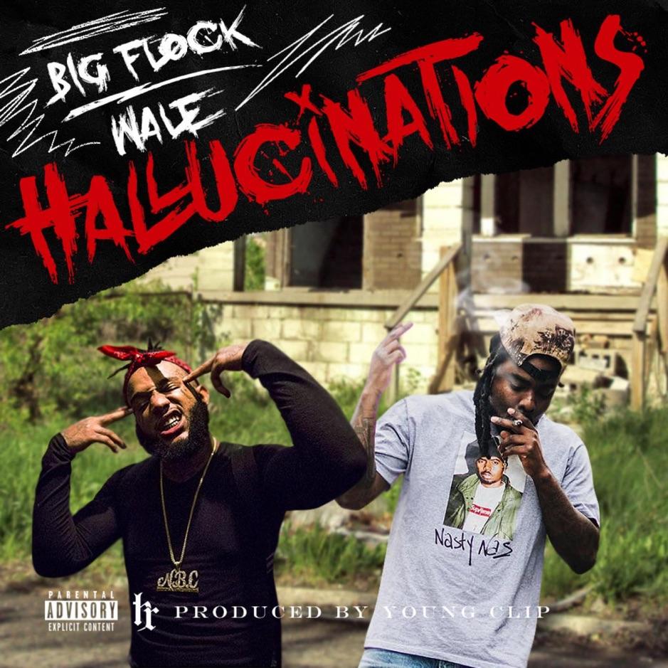 "Big Flock Feat. Wale – ""Hallucinations"""