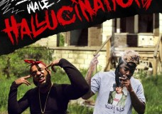 "Big Flock Feat. Wale – ""Hallucinations"""