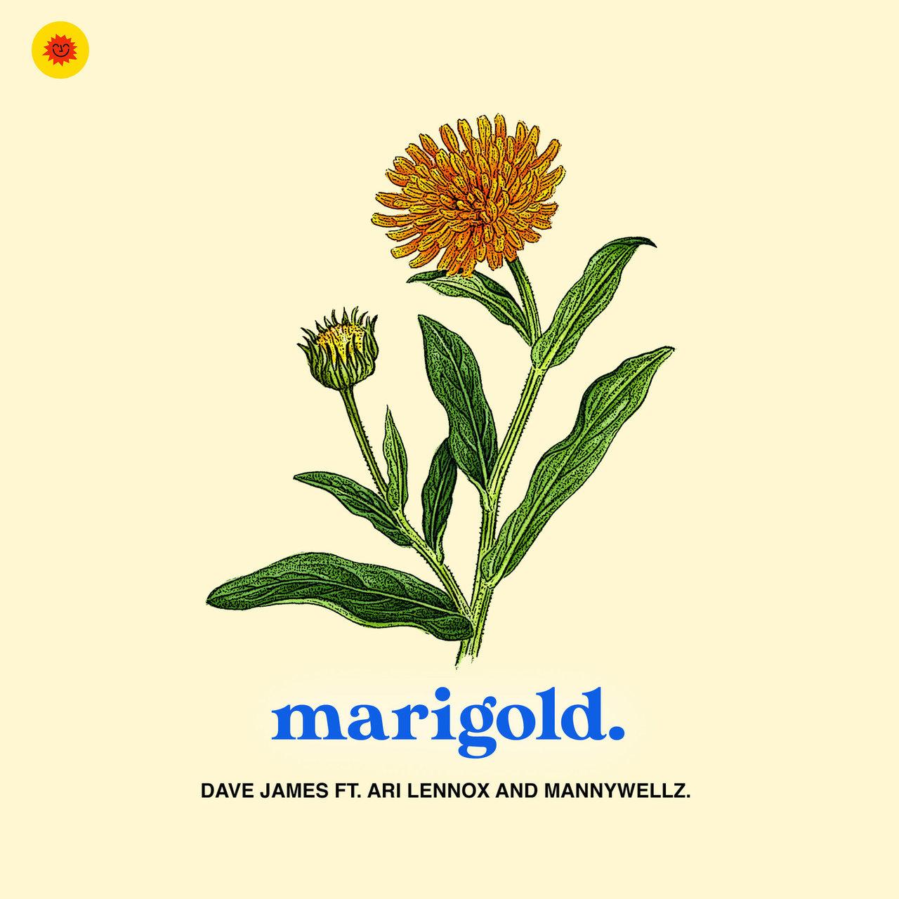 """Dave James Feat. Ari Lennox & Mannywellz – """"Marigold"""""""