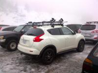 Juke Roof Rack - Bing images