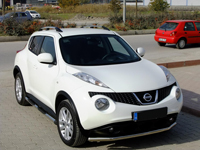 Quest for Juke Factory Style Roof Rack