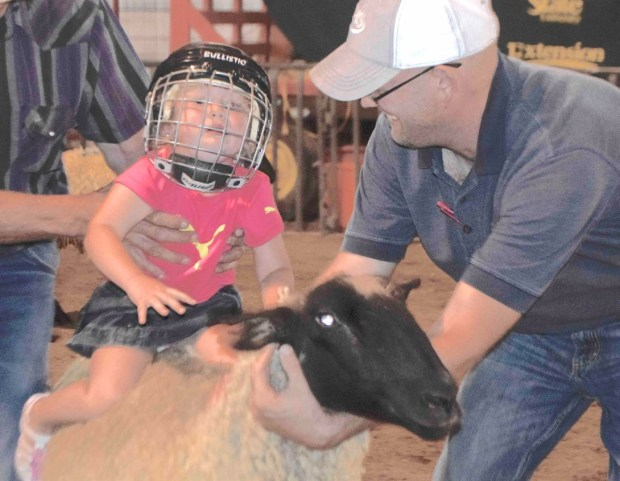 It's Fair Time in Sedgwick County – Julesburg Advocate