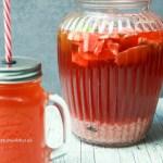 Ingwer Wasser Kefir Probiotika glutenfrei, vegan