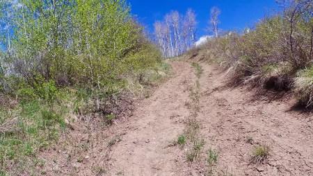 The North Trail, Colorado