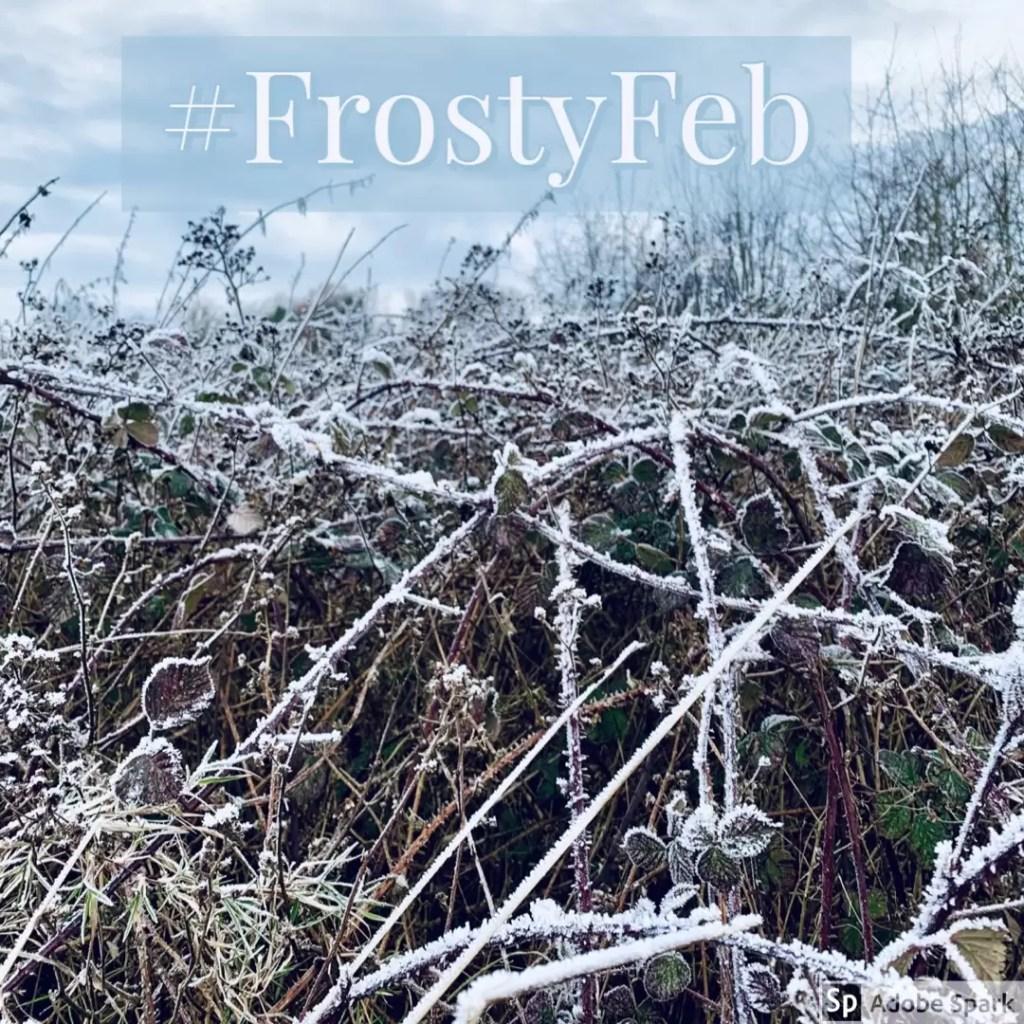February winter scene