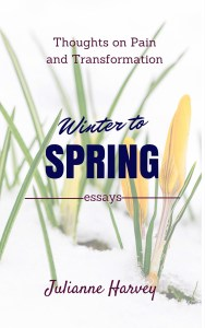 Winter to spring cover