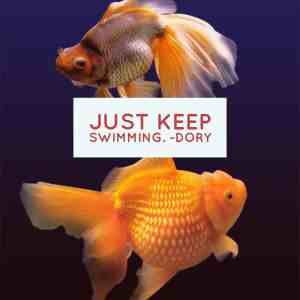 It's Monday – Just Keep Swimming