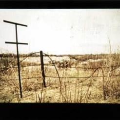 Julia Winckler: Traces
